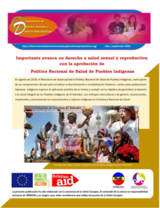 Lee más sobre el artículo Boletin n° 3-2018: importante avance en derecho a salud sexual y reproductiva con la aprobación de política nacional de salud de pueblos indígenas
