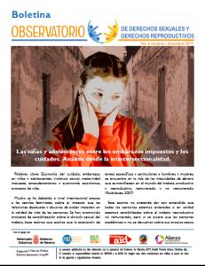 Boletin n° 4-2019: Las niñas y adolescentes entre los embarazos impuestos y los cuidados. Análisis desde la intinterseccionalidad.