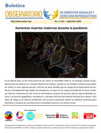 Boletin n° 3-2020 Aumentan muertes maternas durante la pandemia